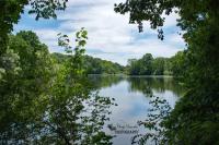 Dorchester Mill Pond