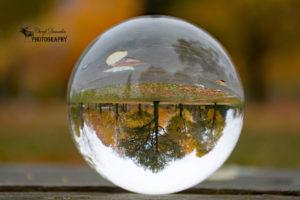 Fall fun with my Lensball